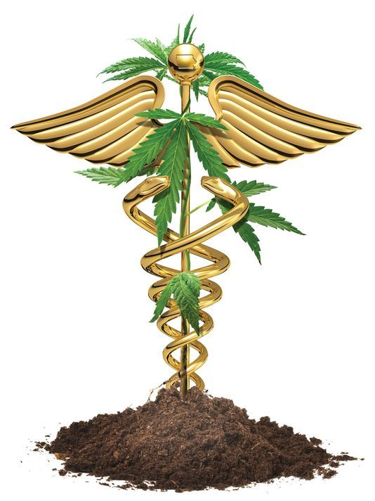 medical marijuana pa caduceus rod of Asklepios or Aesculapius doctor symbol